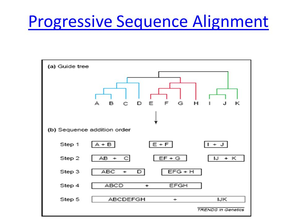 Progressive Sequence Alignment
