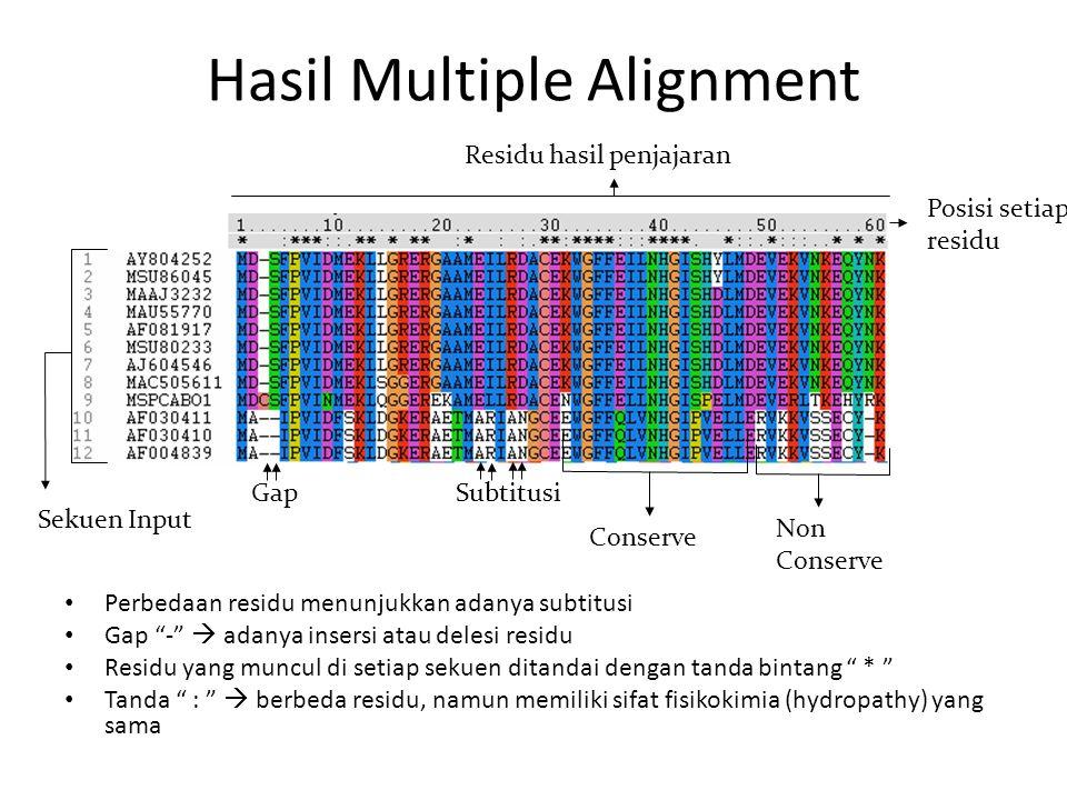 Hasil Multiple Alignment