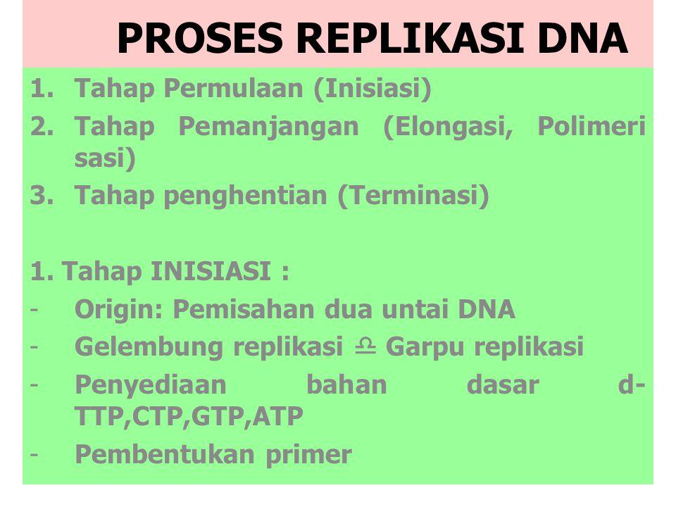 PROSES REPLIKASI DNA Tahap Permulaan (Inisiasi)