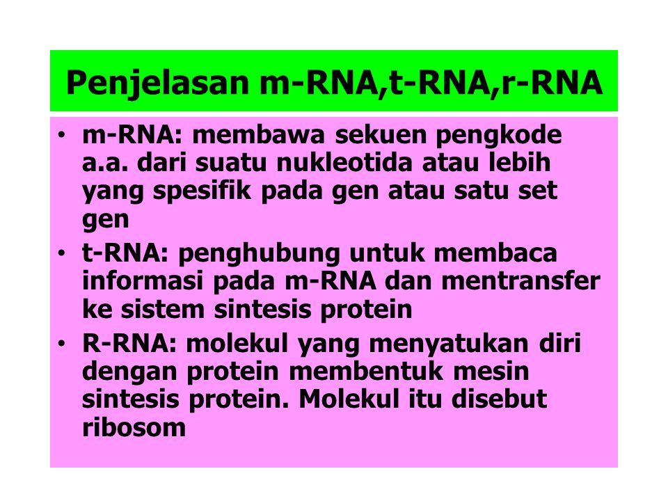 Penjelasan m-RNA,t-RNA,r-RNA