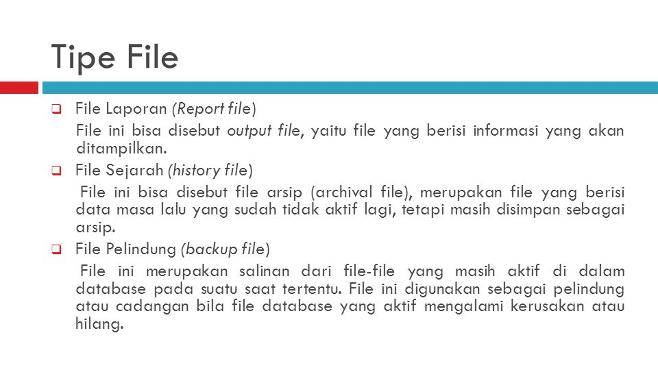 Tipe File File Laporan (Report file)