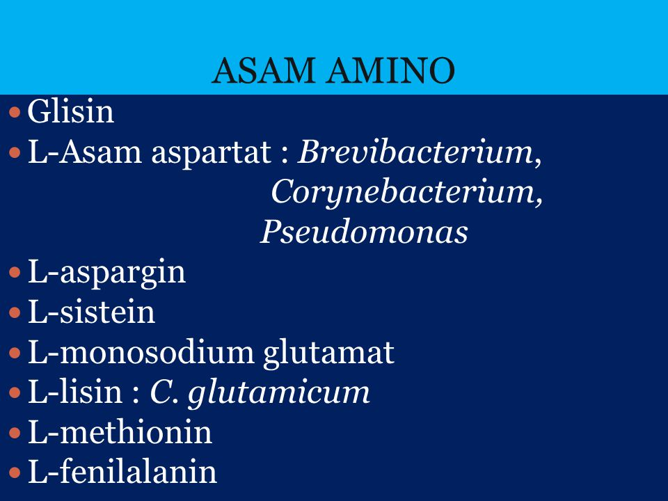 ASAM AMINO Glisin L-Asam aspartat : Brevibacterium, Corynebacterium,