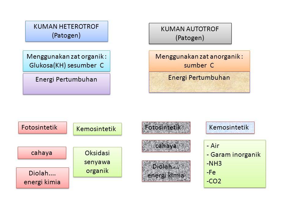 Menggunakan zat organik : Glukosa(KH) sesumber C
