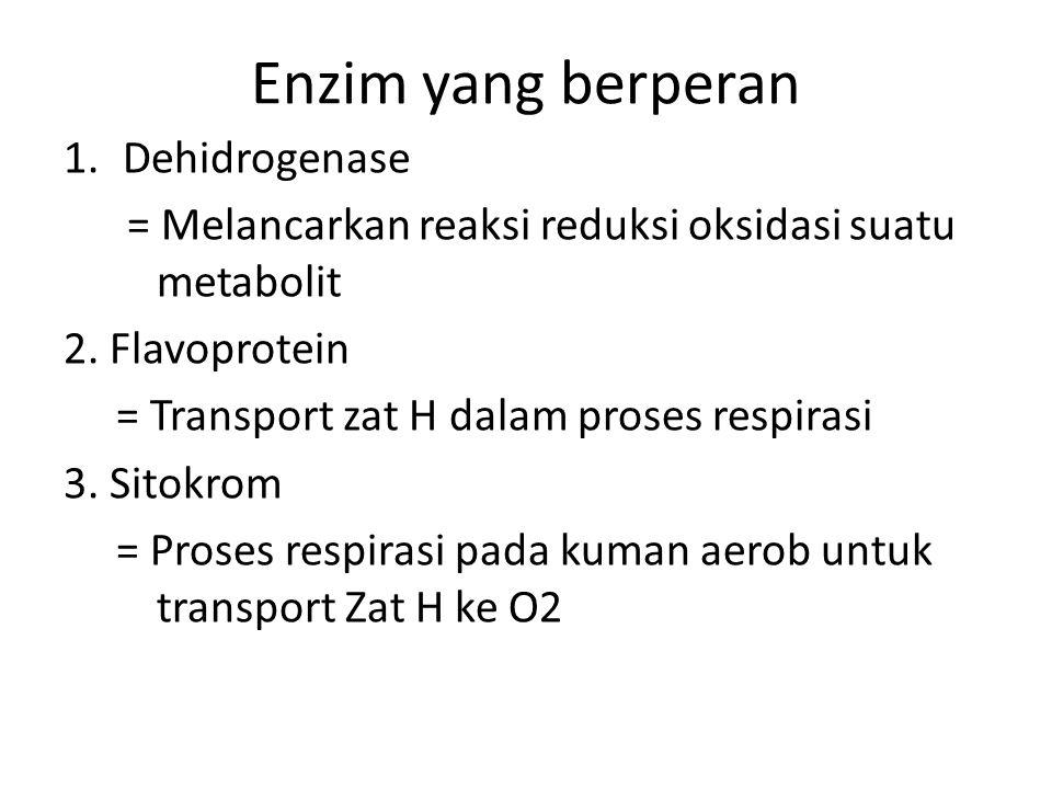 Enzim yang berperan Dehidrogenase