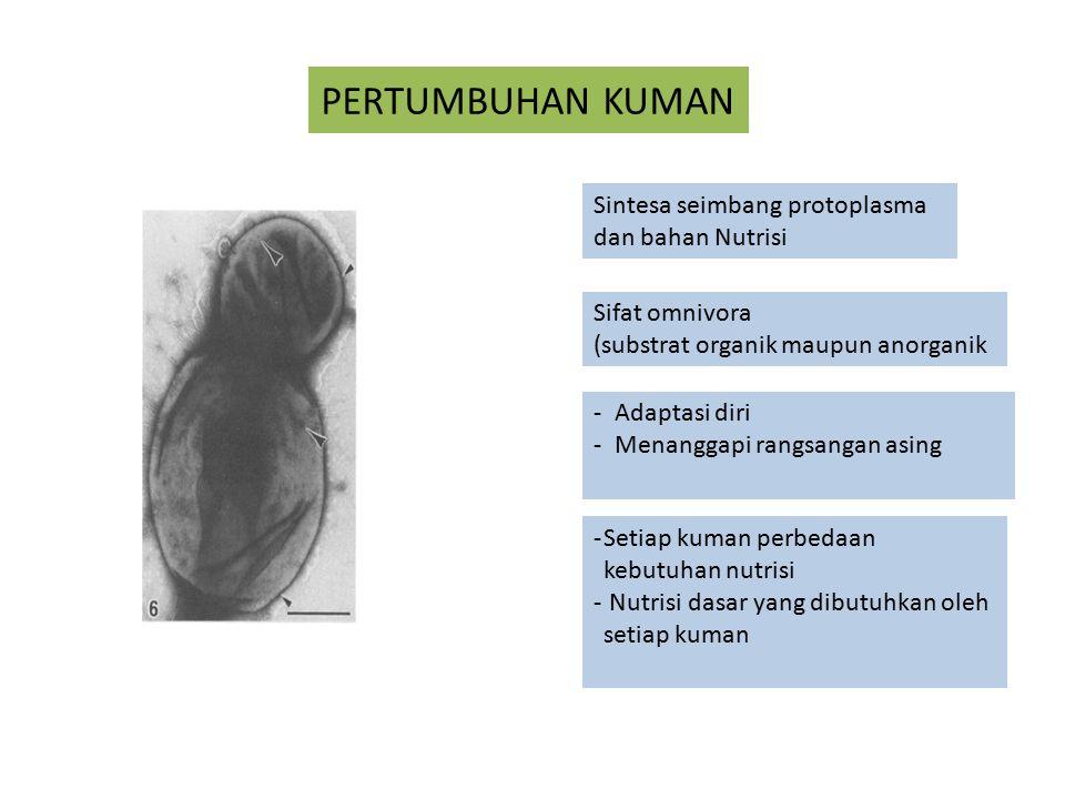 PERTUMBUHAN KUMAN Sintesa seimbang protoplasma dan bahan Nutrisi