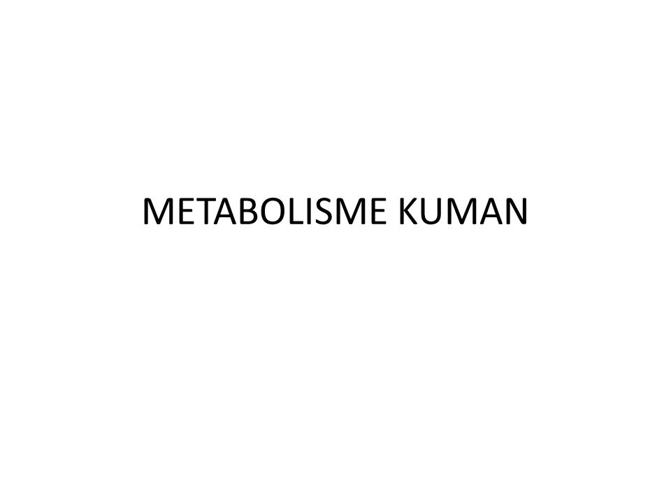 METABOLISME KUMAN
