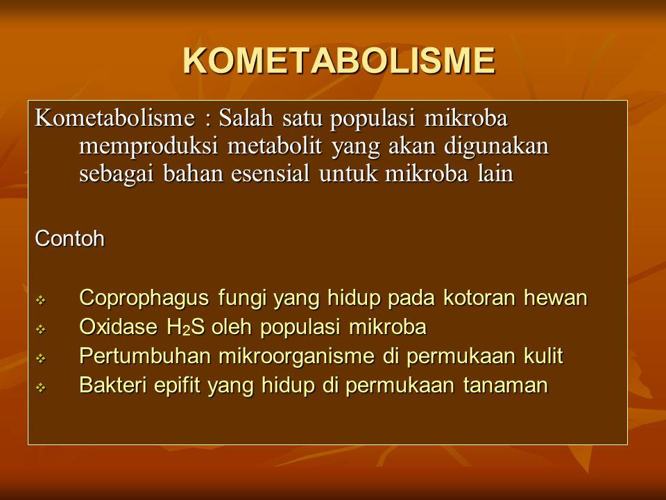 KOMETABOLISME Kometabolisme : Salah satu populasi mikroba memproduksi metabolit yang akan digunakan sebagai bahan esensial untuk mikroba lain.