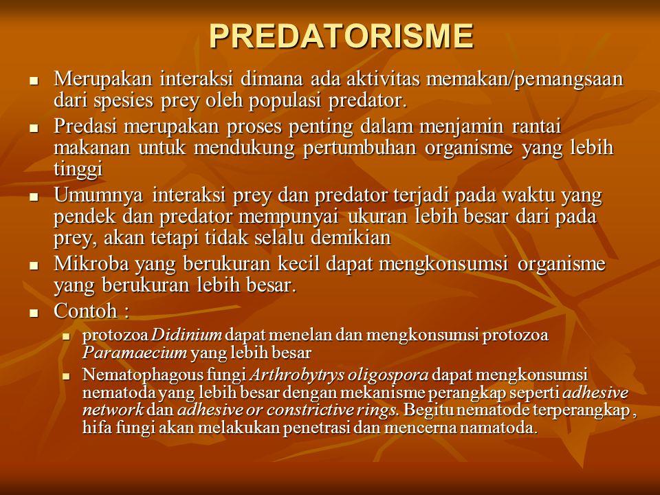 PREDATORISME Merupakan interaksi dimana ada aktivitas memakan/pemangsaan dari spesies prey oleh populasi predator.