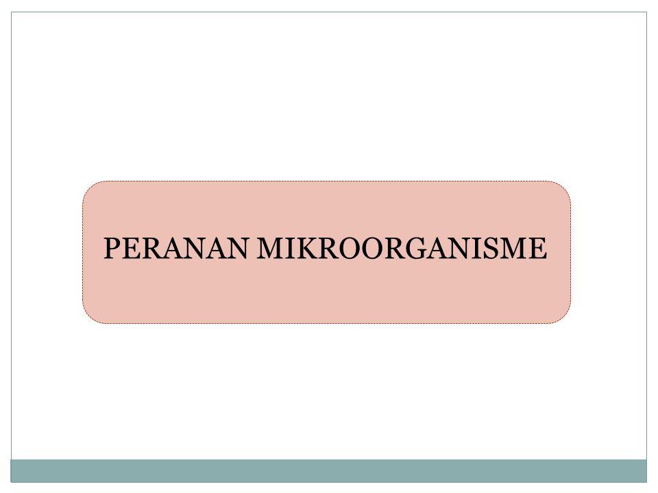 PERANAN MIKROORGANISME