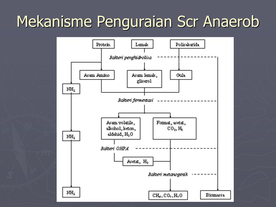 Mekanisme Penguraian Scr Anaerob