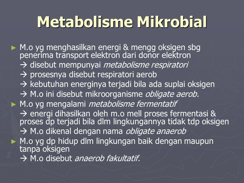 Metabolisme Mikrobial