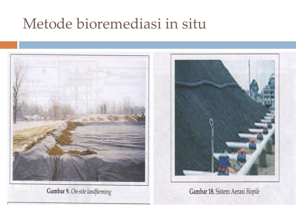 Metode bioremediasi in situ