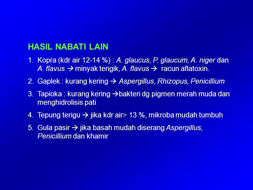 HASIL NABATI LAIN Kopra (kdr air 12-14 %) : A. glaucus, P. glaucum, A. niger dan A. flavus  minyak tengik, A. flavus  racun aflatoxin.