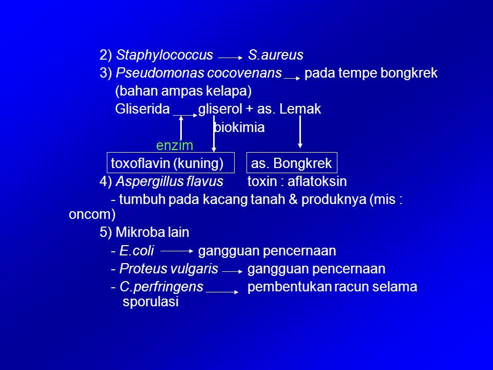 2) Staphylococcus S.aureus