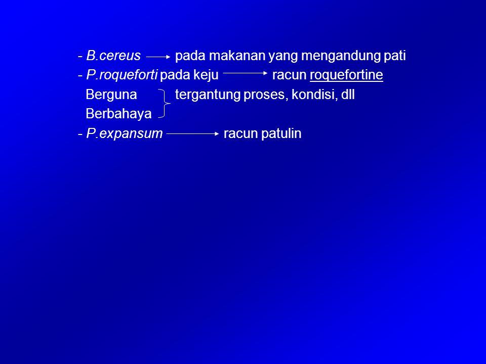 - B.cereus pada makanan yang mengandung pati