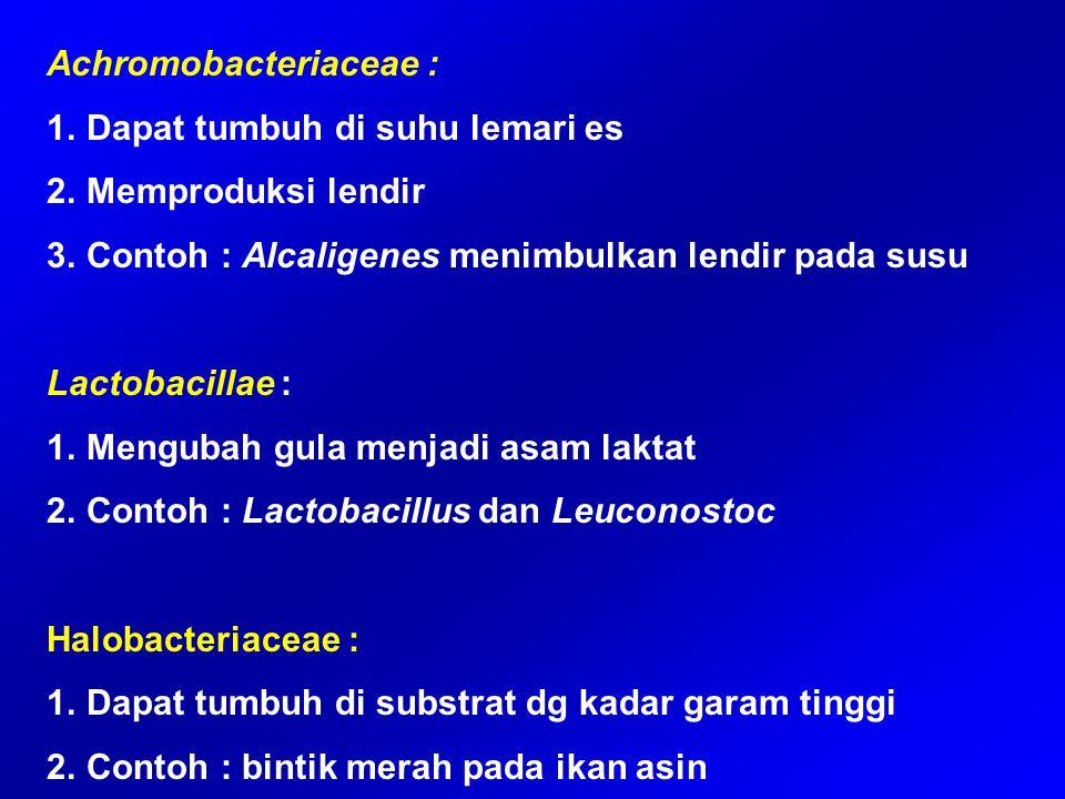Achromobacteriaceae :