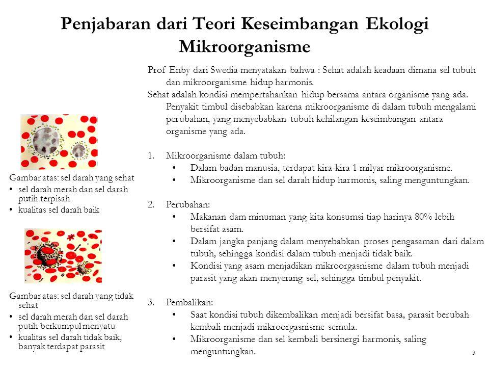 Penjabaran dari Teori Keseimbangan Ekologi Mikroorganisme