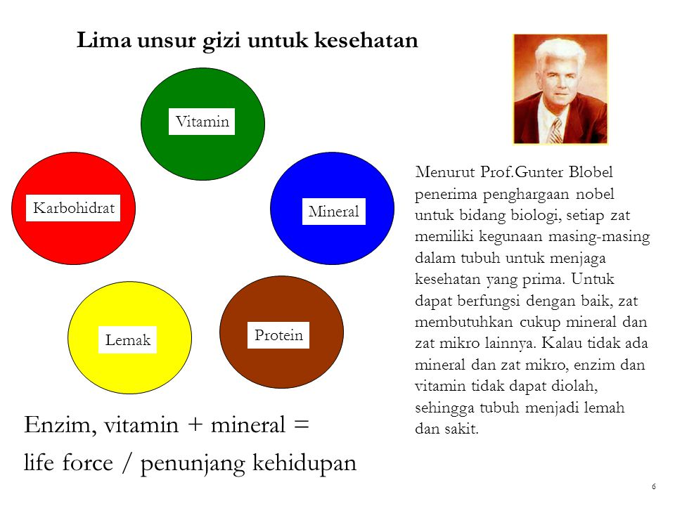Lima unsur gizi untuk kesehatan