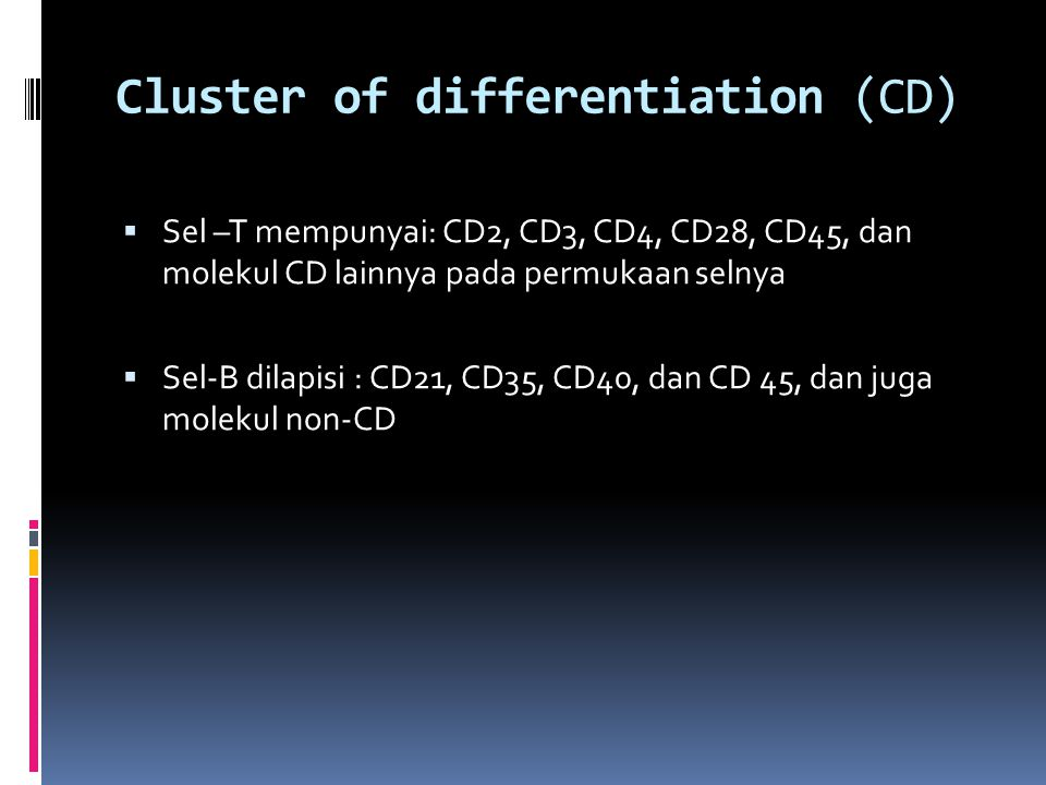 Cluster of differentiation (CD)