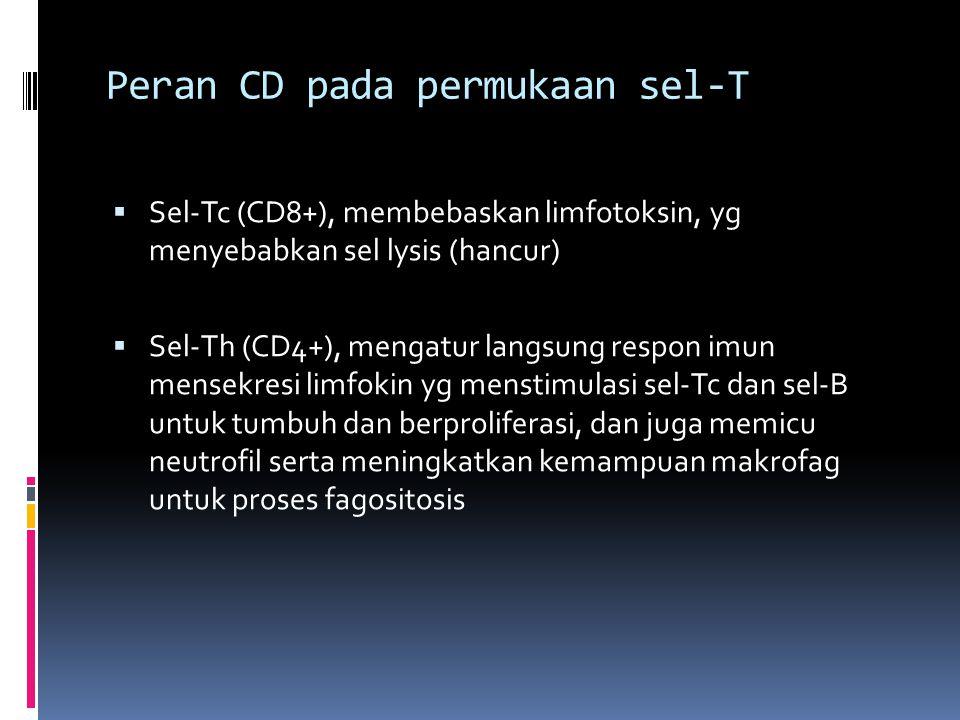 Peran CD pada permukaan sel-T