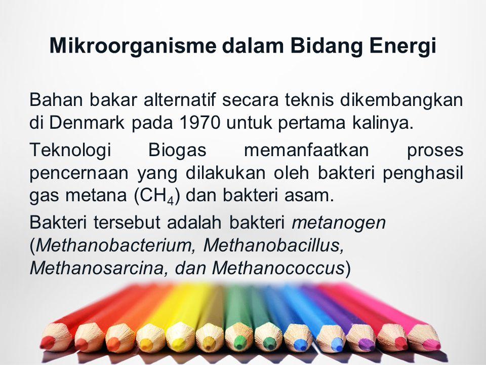 Mikroorganisme dalam Bidang Energi