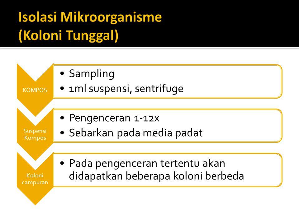 Isolasi Mikroorganisme (Koloni Tunggal)