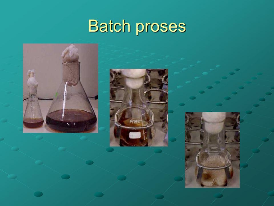 Batch proses