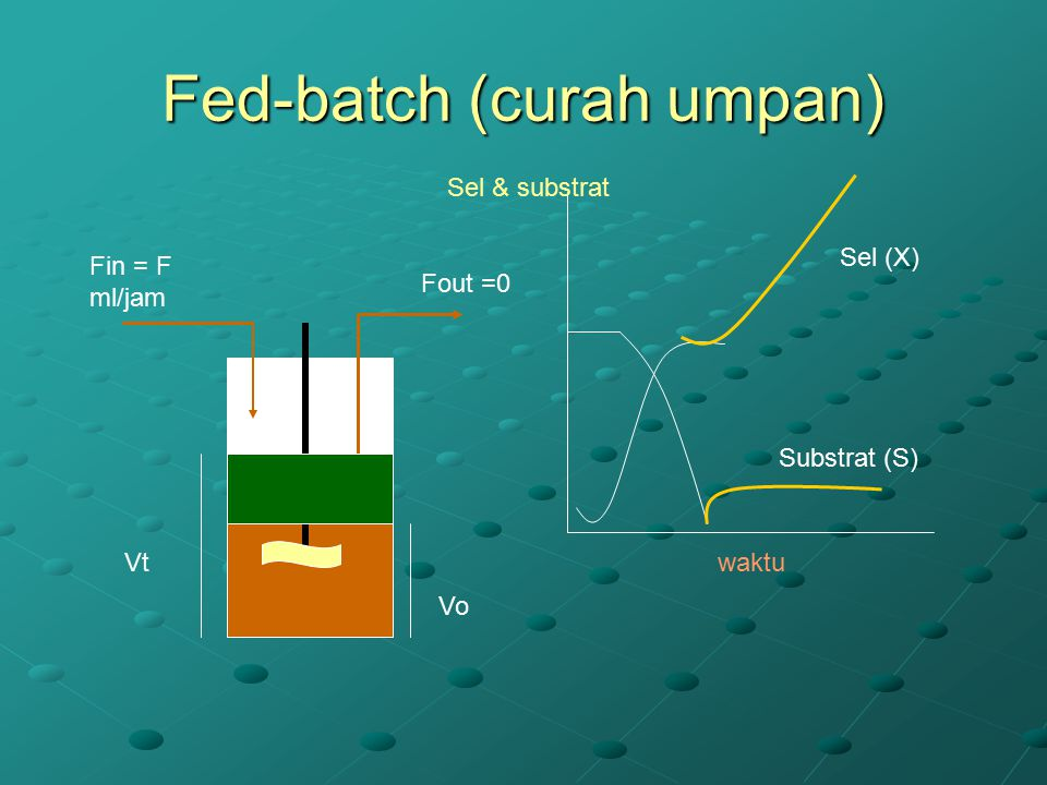 Fed-batch (curah umpan)