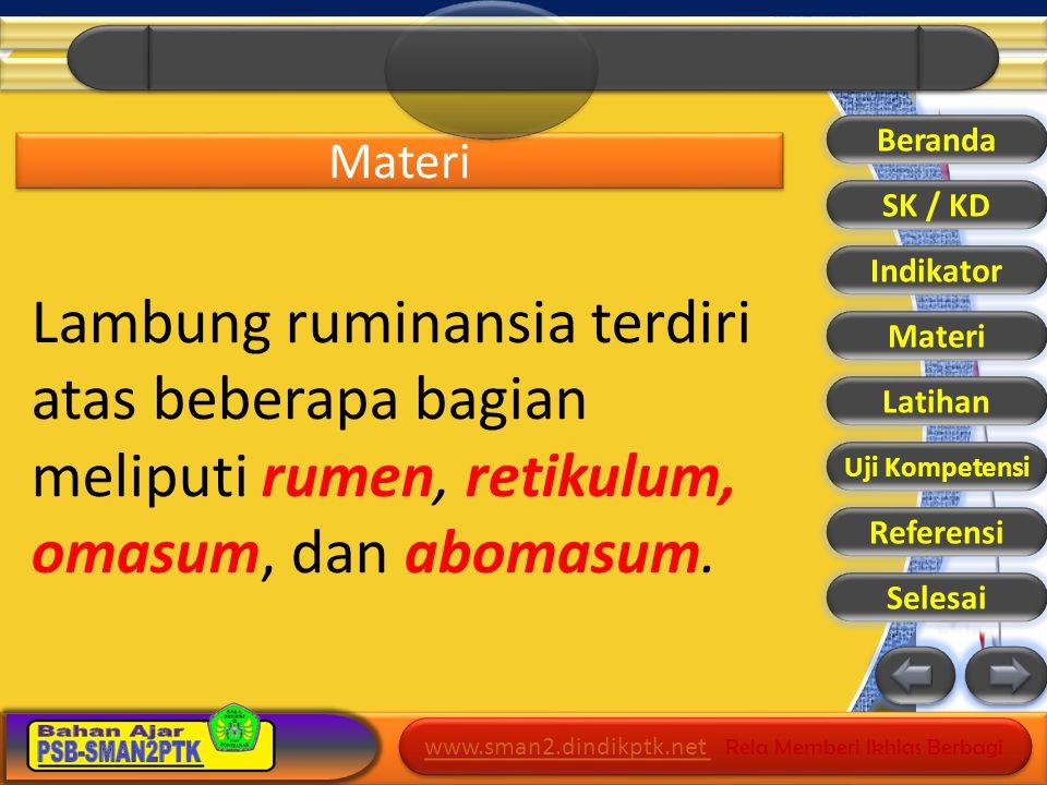 Beranda Materi. SK / KD. Indikator. Lambung ruminansia terdiri atas beberapa bagian meliputi rumen, retikulum, omasum, dan abomasum.