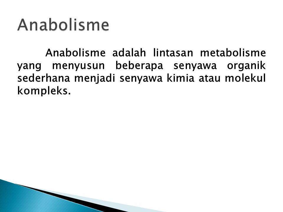 Anabolisme Anabolisme adalah lintasan metabolisme yang menyusun beberapa senyawa organik sederhana menjadi senyawa kimia atau molekul kompleks.
