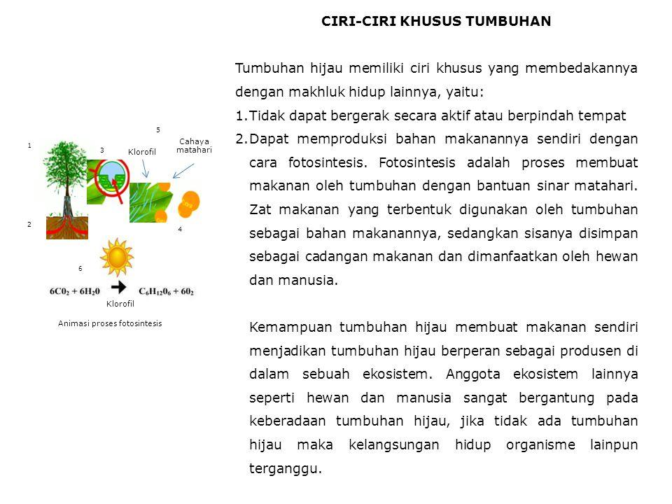 CIRI-CIRI KHUSUS TUMBUHAN