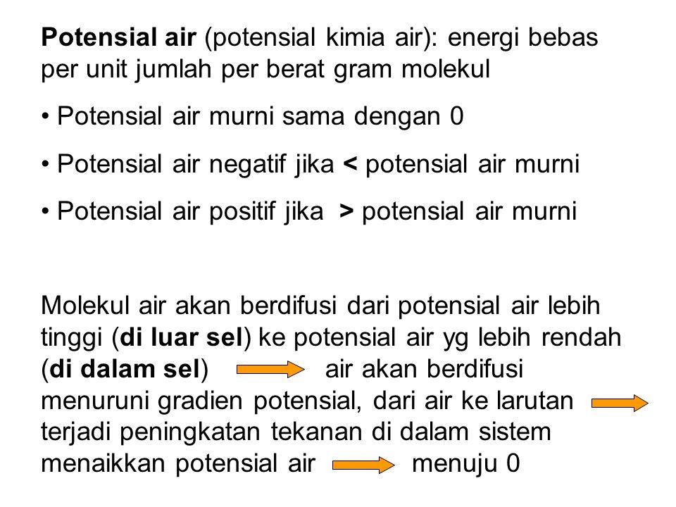 Potensial air (potensial kimia air): energi bebas per unit jumlah per berat gram molekul