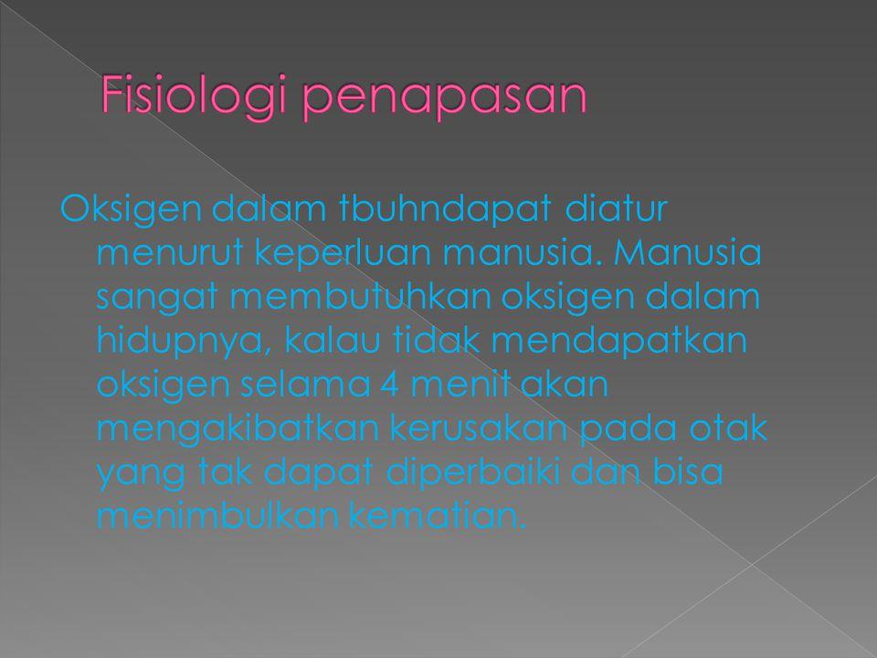 Fisiologi penapasan