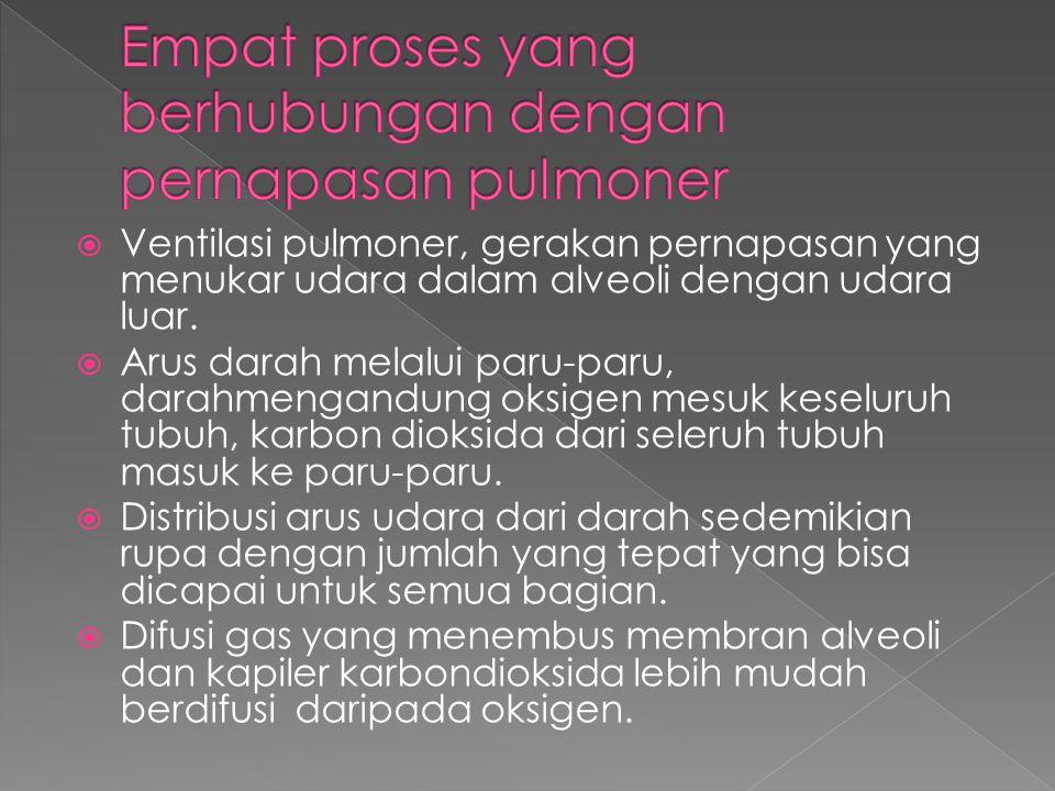 Empat proses yang berhubungan dengan pernapasan pulmoner