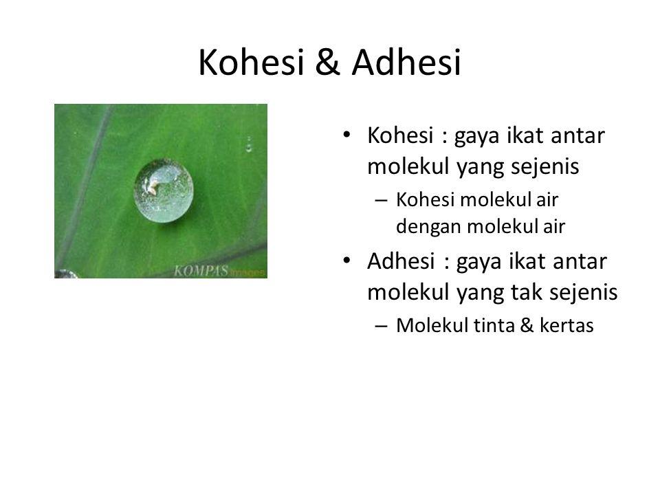 Kohesi & Adhesi Kohesi : gaya ikat antar molekul yang sejenis