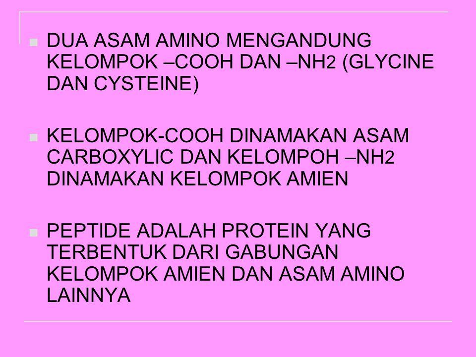 DUA ASAM AMINO MENGANDUNG KELOMPOK –COOH DAN –NH2 (GLYCINE DAN CYSTEINE)