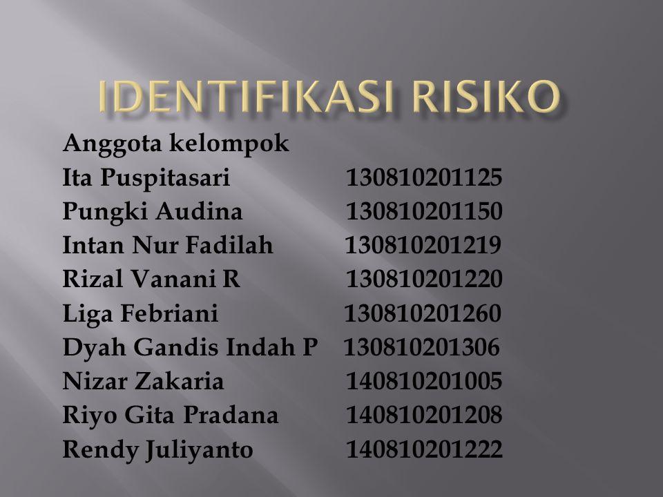identifikasi risiko Anggota kelompok Ita Puspitasari 130810201125