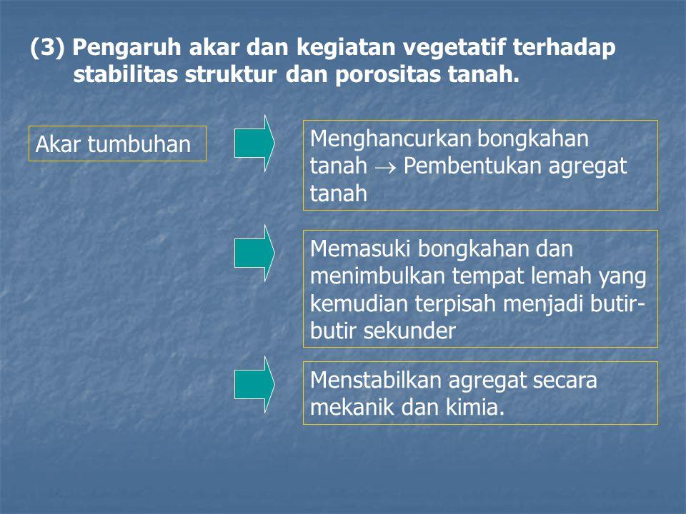 (3) Pengaruh akar dan kegiatan vegetatif terhadap stabilitas struktur dan porositas tanah.