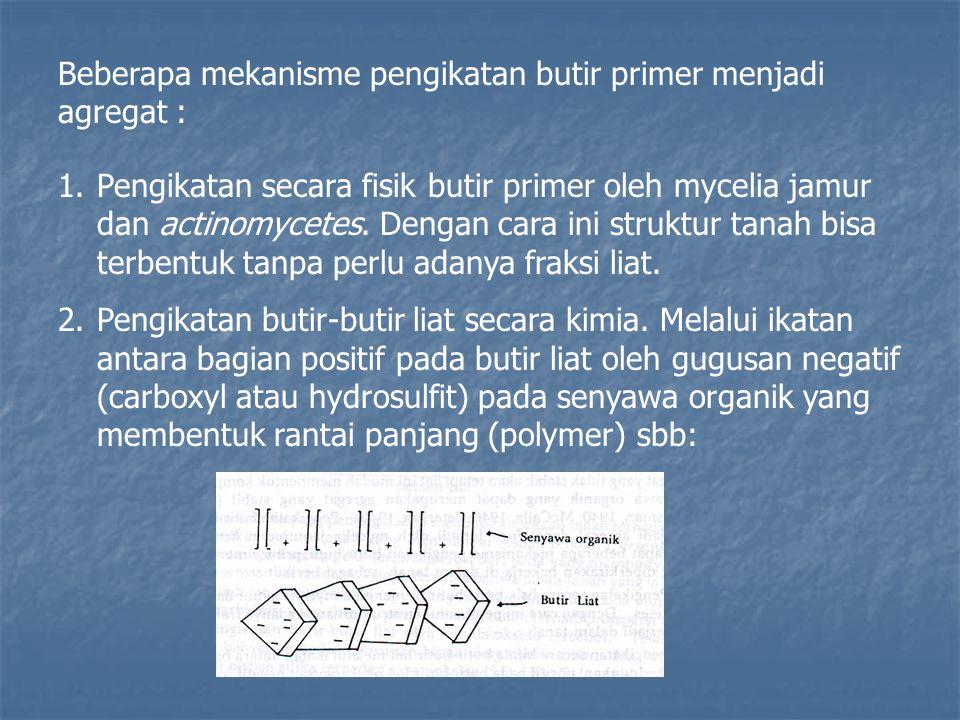 Beberapa mekanisme pengikatan butir primer menjadi agregat :