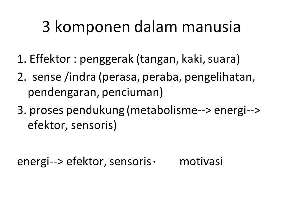 3 komponen dalam manusia