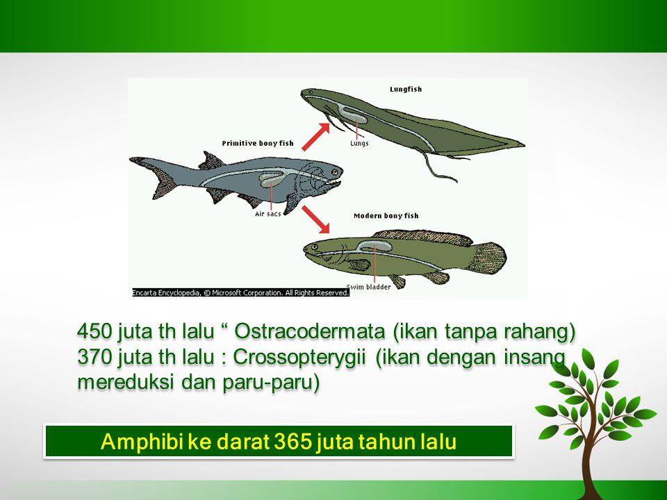 Amphibi ke darat 365 juta tahun lalu