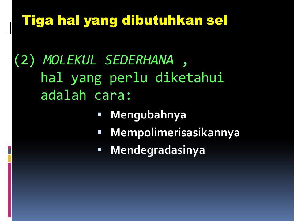 (2) MOLEKUL SEDERHANA , hal yang perlu diketahui adalah cara: