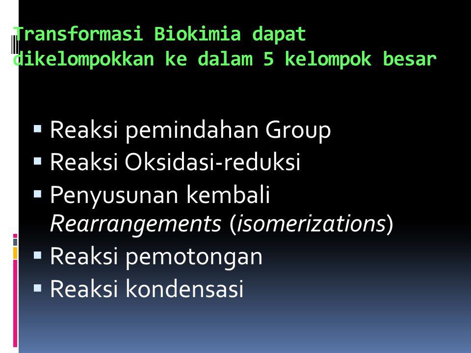 Transformasi Biokimia dapat dikelompokkan ke dalam 5 kelompok besar