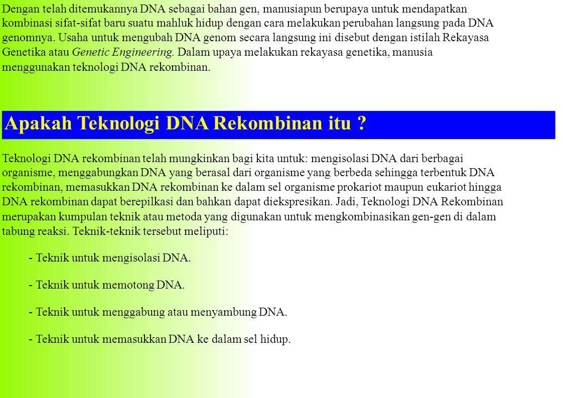 Apakah Teknologi DNA Rekombinan itu