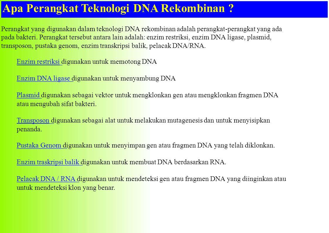 Apa Perangkat Teknologi DNA Rekombinan