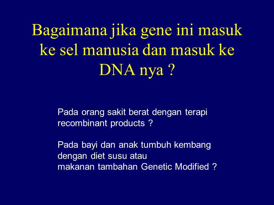 Bagaimana jika gene ini masuk ke sel manusia dan masuk ke DNA nya