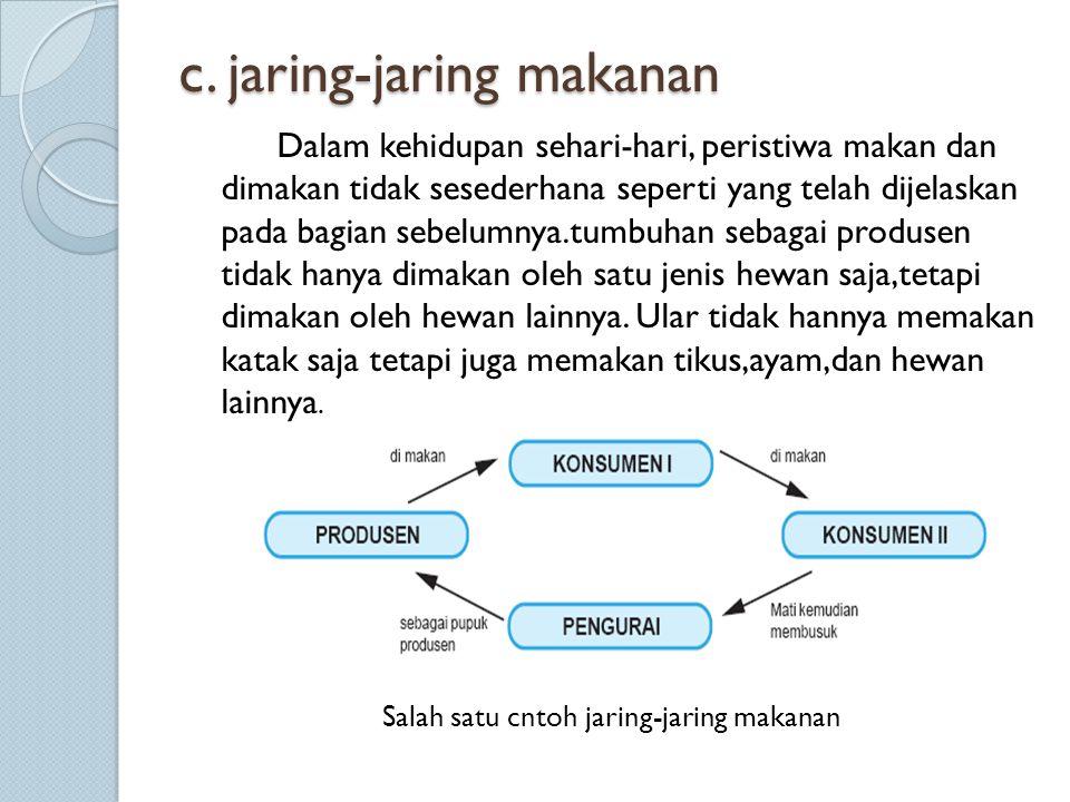 c. jaring-jaring makanan