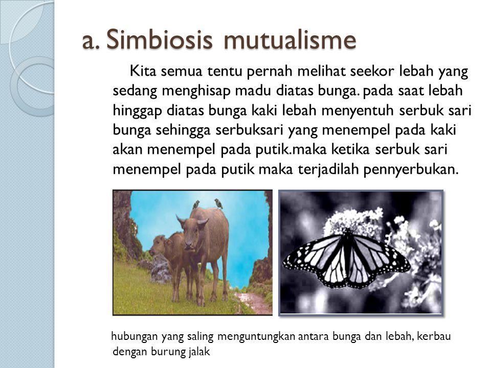a. Simbiosis mutualisme