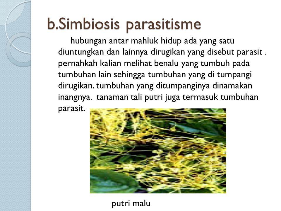 b.Simbiosis parasitisme