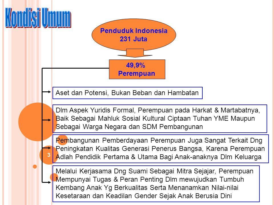 Kondisi Umum Penduduk Indonesia 231 Juta 49,9% Perempuan